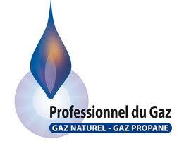 Professionnel Gaz